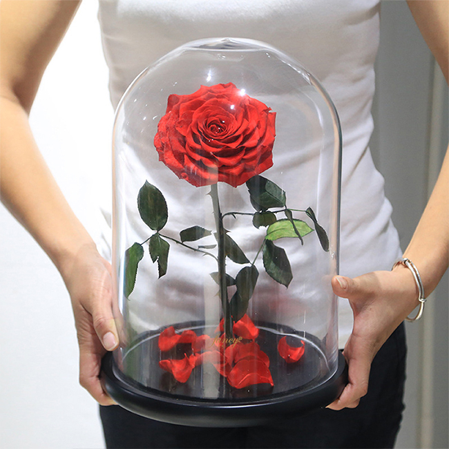 Preserved Rose in L Size Glass